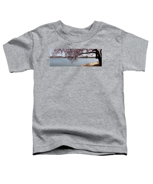 Cherry Blossom Trees With The Jefferson Toddler T-Shirt by Panoramic Images