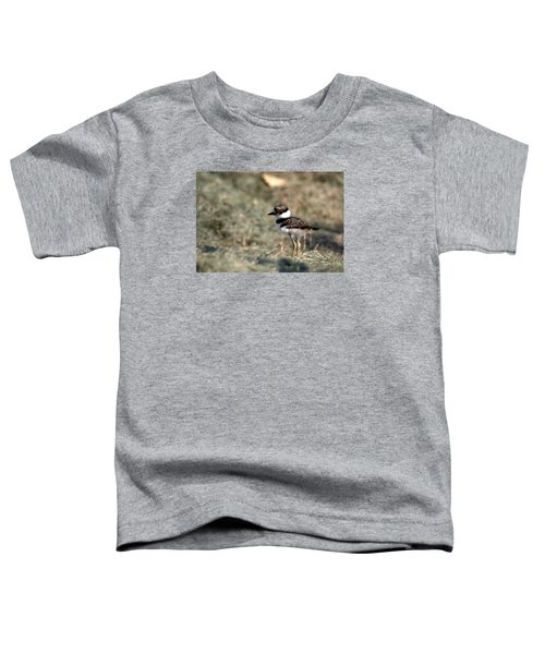Its A Killdeer Babe Toddler T-Shirt by Skip Willits