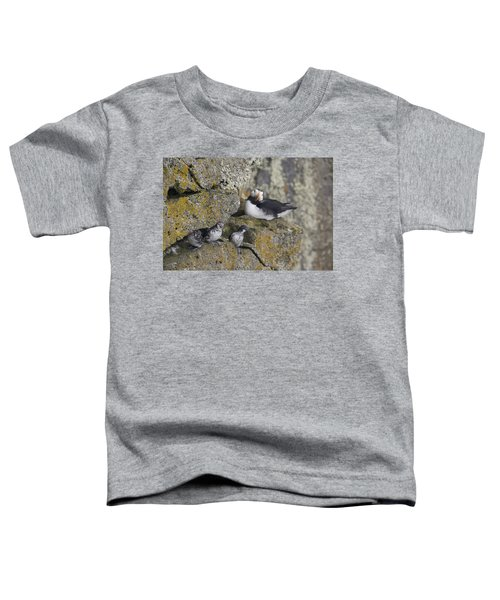 Least Auklets Perched On A Narrow Ledge Toddler T-Shirt by Milo Burcham