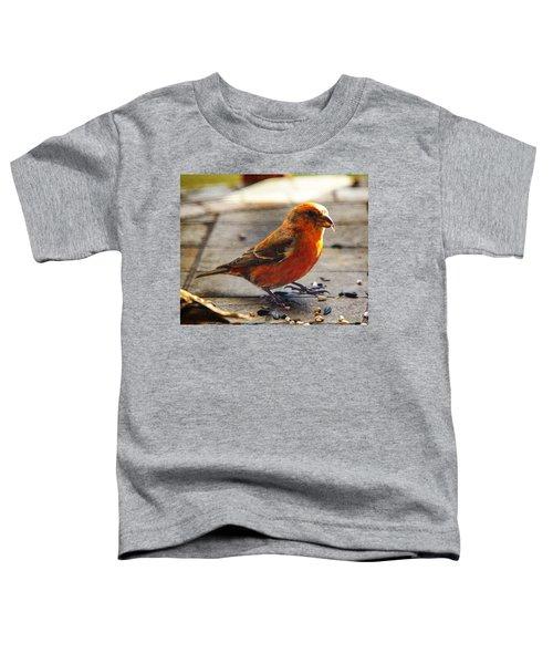 Look - I'm A Crossbill Toddler T-Shirt by Robert L Jackson
