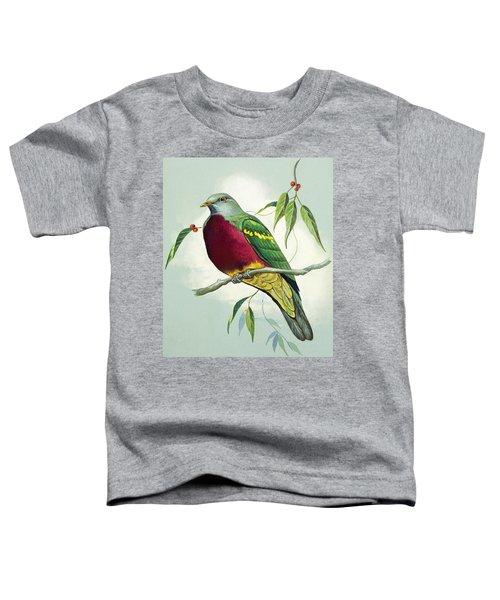 Magnificent Fruit Pigeon Toddler T-Shirt by Bert Illoss