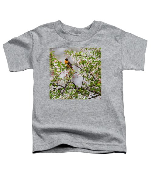 Oriole In Crabapple Tree Square Toddler T-Shirt by Bill Wakeley