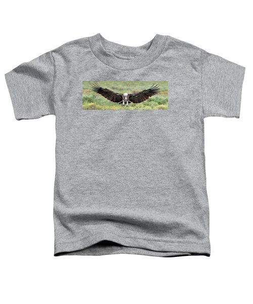 Ruppells Griffon Vulture Gyps Toddler T-Shirt by Panoramic Images