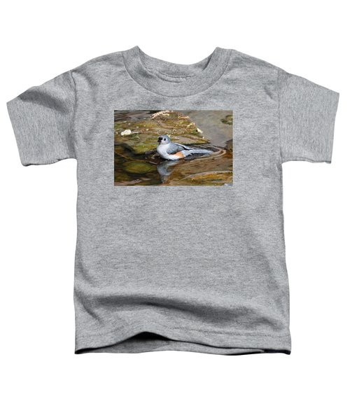 Tufted Titmouse In Pond Toddler T-Shirt by Sandy Keeton