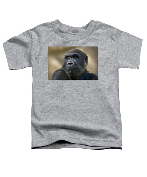 Western Lowland Gorilla Portrait Toddler T-Shirt by San Diego Zoo