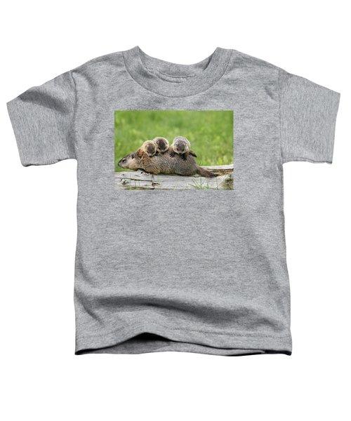 Woodchuck Carrying Young Minnesota Toddler T-Shirt by Jurgen & Christine Sohns