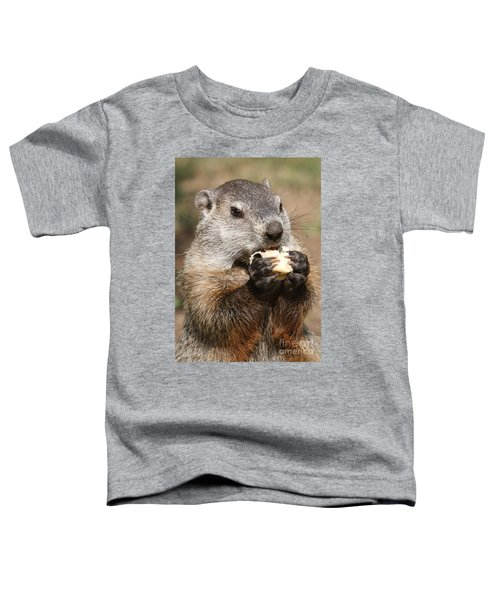 Animal - Woodchuck - Eating Toddler T-Shirt by Paul Ward