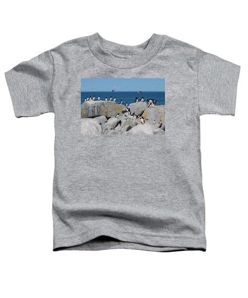 Auk Island Toddler T-Shirt by Bruce J Robinson