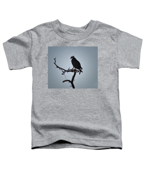 The Osprey Toddler T-Shirt by Bill Cannon