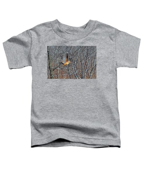 American Woodcock In Takeoff Flight Toddler T-Shirt by Asbed Iskedjian