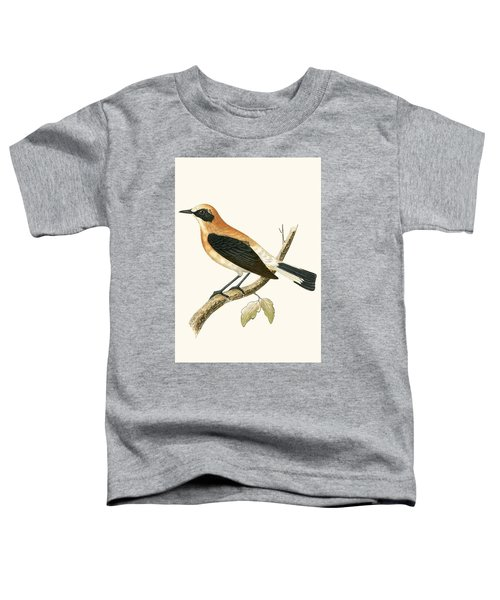 Black Eared Wheatear Toddler T-Shirt by English School