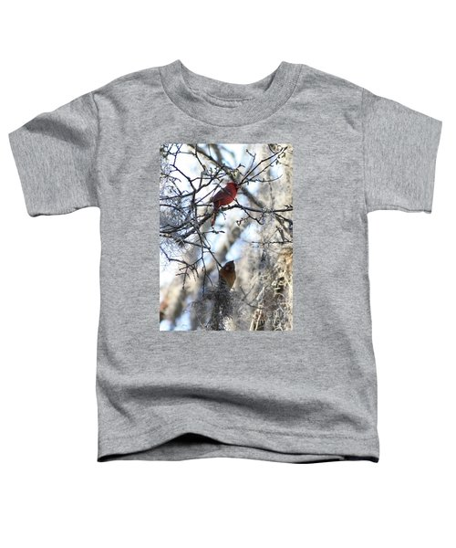 Cardinals In Mossy Tree Toddler T-Shirt by Carol Groenen