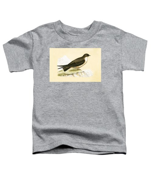 Crag Swallow Toddler T-Shirt by English School