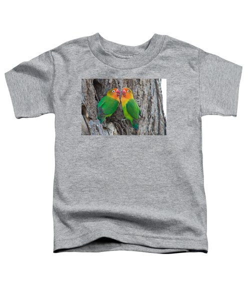 Fischers Lovebird Agapornis Fischeri Toddler T-Shirt by Panoramic Images