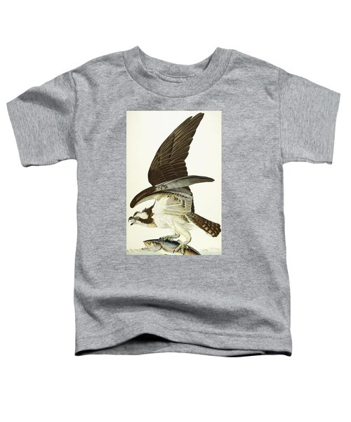 Fish Hawk Toddler T-Shirt by John James Audubon