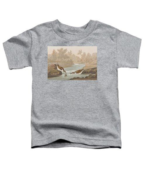 Little Sandpiper Toddler T-Shirt by John James Audubon