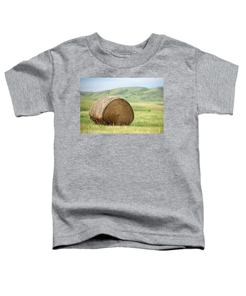 Meadowlark Heaven Toddler T-Shirt by Todd Klassy