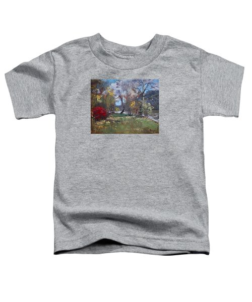 Mixed Weather In A Fall Afternoon Toddler T-Shirt by Ylli Haruni