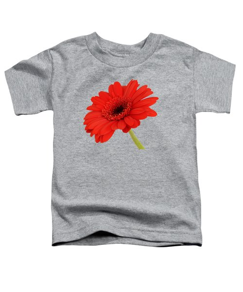 Red Gerbera Daisy 2 Toddler T-Shirt by Scott Carruthers