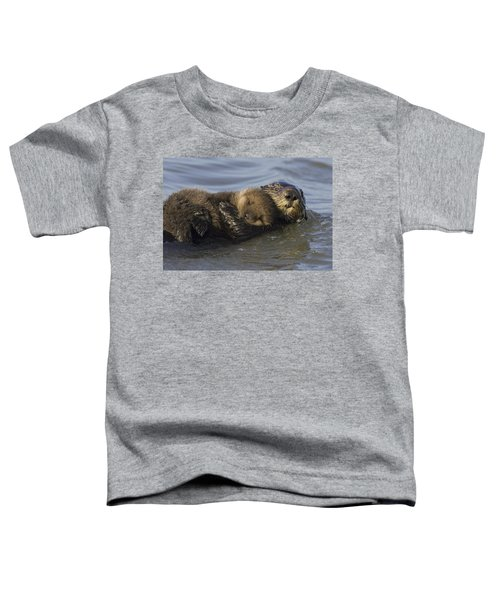 Sea Otter Mother With Pup Monterey Bay Toddler T-Shirt by Suzi Eszterhas