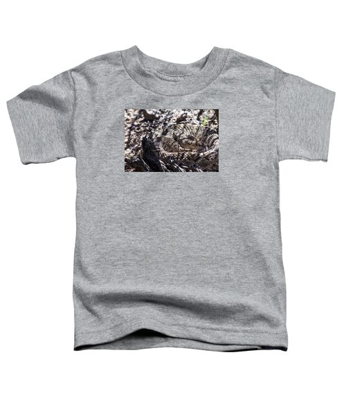 Snake In The Shadows Toddler T-Shirt by Chuck Brown