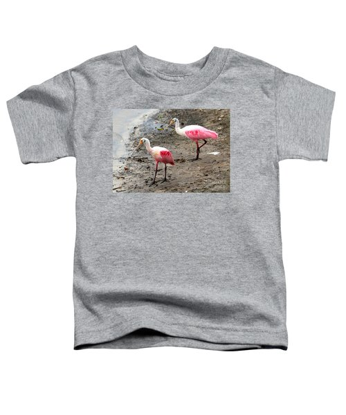 Two Roseate Spoonbills Toddler T-Shirt by Carol Groenen