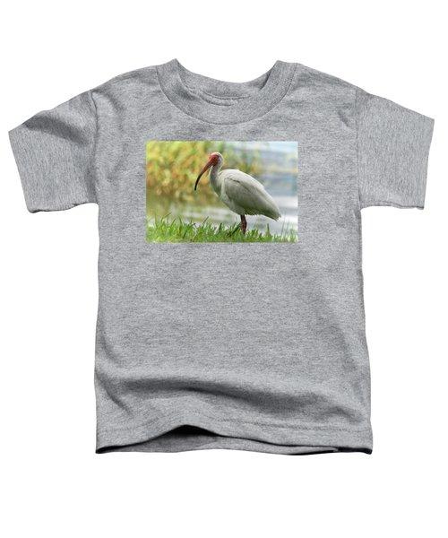 White Ibis On The Florida Shore  Toddler T-Shirt by Saija Lehtonen