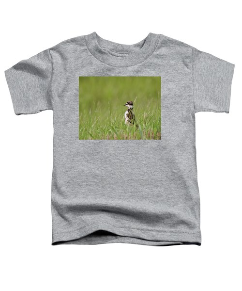 Young Killdeer In Grass Toddler T-Shirt by Mark Duffy