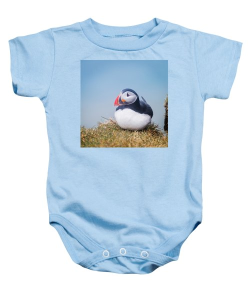 Atlantic Puffin Fratercula Arctica Baby Onesie by Panoramic Images