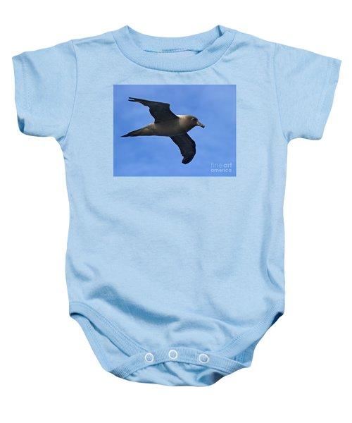 Pelagic Seabird... Baby Onesie by Nina Stavlund
