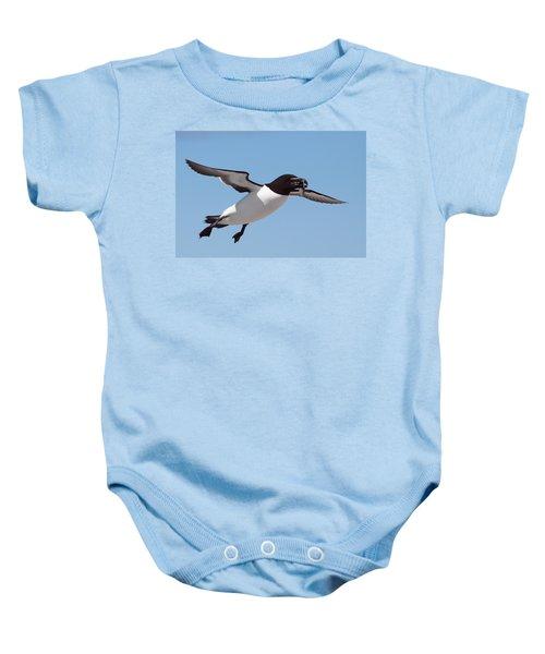 Razorbill In Flight Baby Onesie by Bruce J Robinson