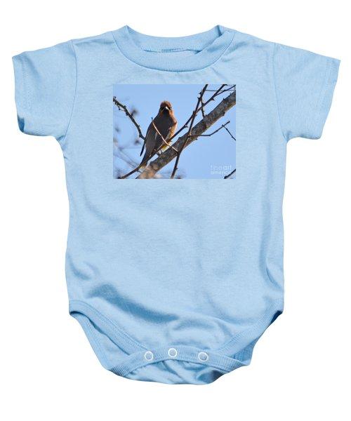 Cedar Wax Wing On The Lookout Baby Onesie by Barbara Dalton