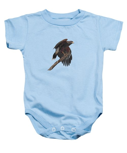 Harris Hawk - Transparent Baby Onesie by Nikolyn McDonald