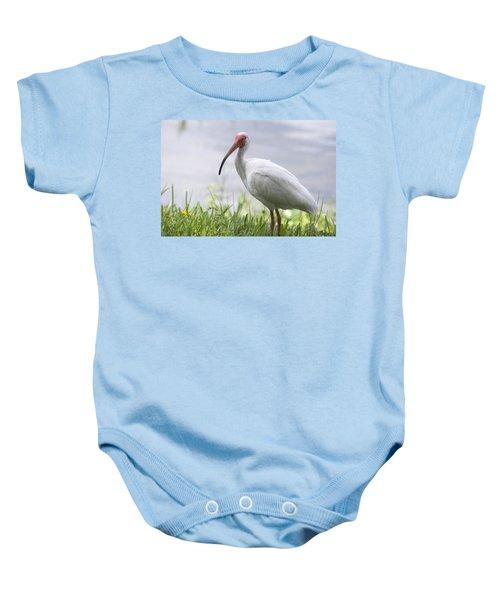 White Ibis  Baby Onesie by Saija  Lehtonen