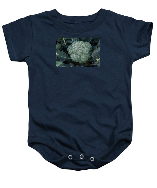 Broccoli Baby Onesie by Robert Bales