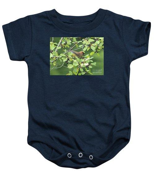 Cedar Waxwing Eating Berries Baby Onesie by Maili Page