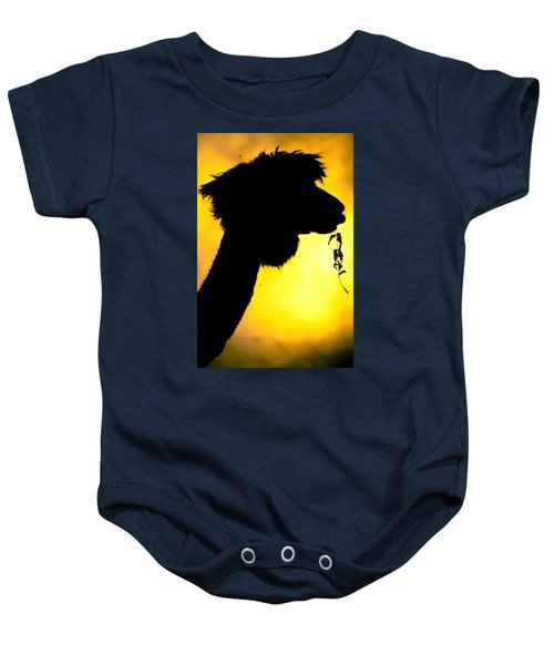 Endless Alpaca Baby Onesie by TC Morgan
