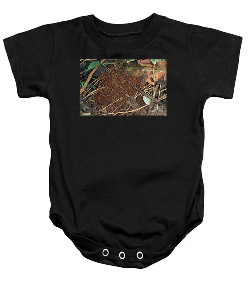 Army Ant Bivouac Site Baby Onesie by Gregory G. Dimijian, M.D.