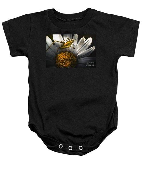 Australian Grasshopper On Flowers. Spring Concept Baby Onesie by Jorgo Photography - Wall Art Gallery