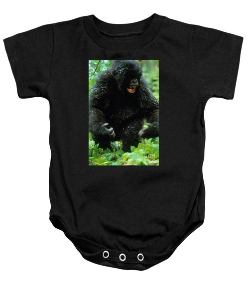 Angry Mountain Gorilla Baby Onesie by Art Wolfe