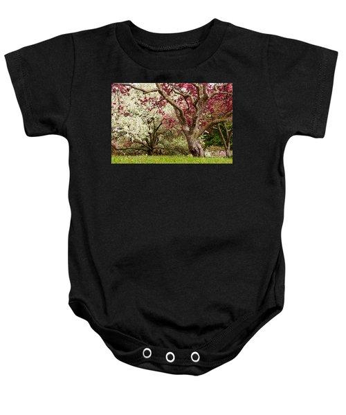 Apple Blossom Colors Baby Onesie by Joe Mamer