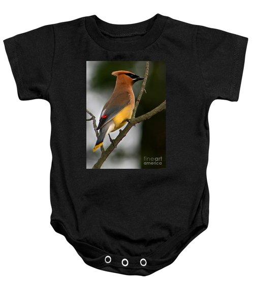 Cedar Wax Wing II Baby Onesie by Roger Becker