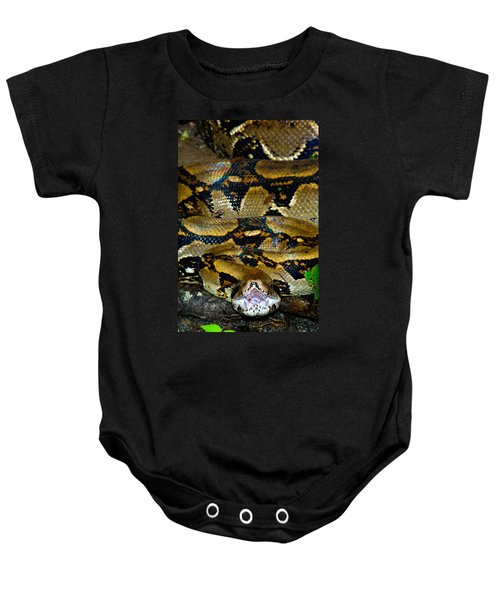 Close-up Of A Boa Constrictor, Arenal Baby Onesie by Panoramic Images