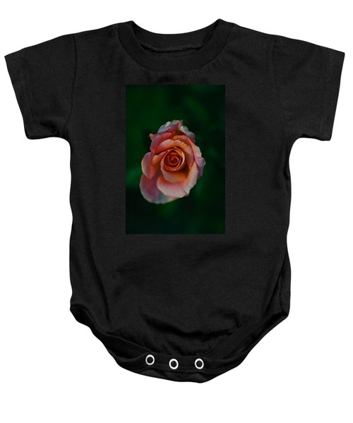 Close-up Of A Pink Rose, Beverly Hills Baby Onesie by Panoramic Images