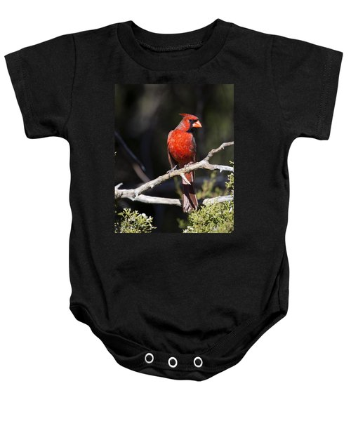 Male Northern Cardinal Baby Onesie by Gary Langley
