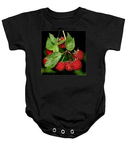Raspberries Baby Onesie by Nikolyn McDonald