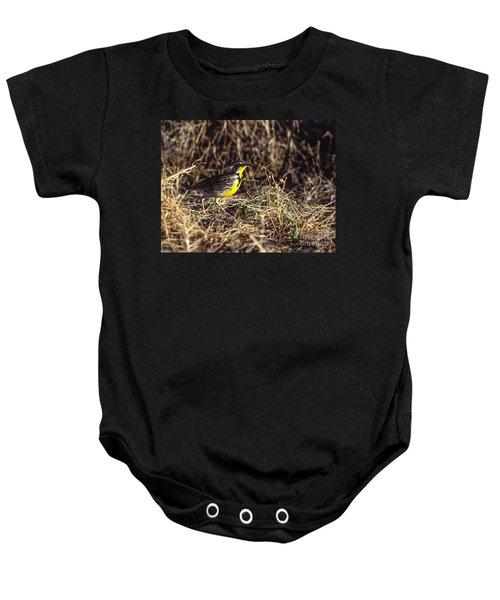 Western Meadowlark Baby Onesie by Steven Ralser
