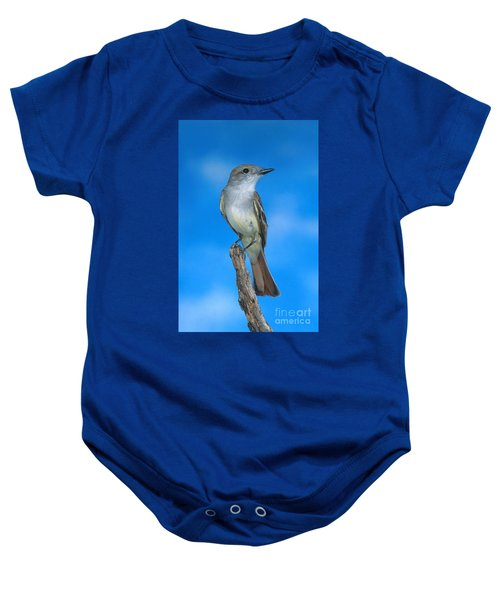 Ash-throated Flycatcher Baby Onesie by Anthony Mercieca