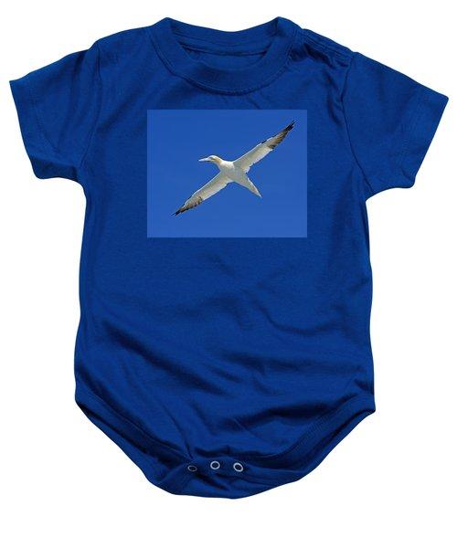 Northern Gannet Baby Onesie by Tony Beck