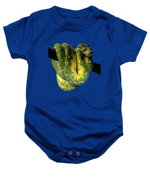 Green Tree Python 2 Baby Onesie by Alondra Hanley